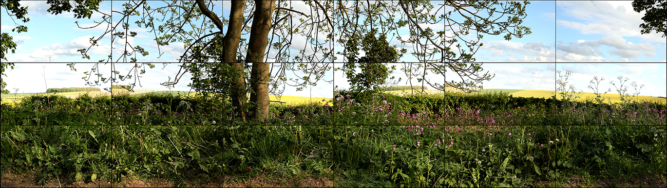 Image of Seven Yorkshire Landscapes