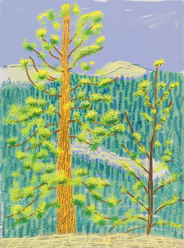 "Image of Untitled No. 8 from ""The Yosemite Suite"", 2010"