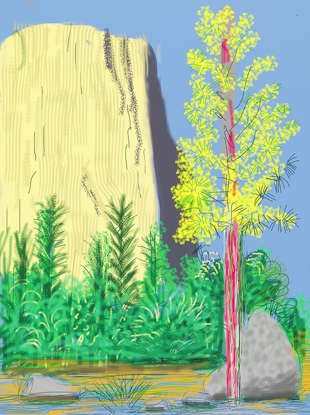 """Image of Untitled No. 22 from """"The Yosemite Suite"""", 2010"""