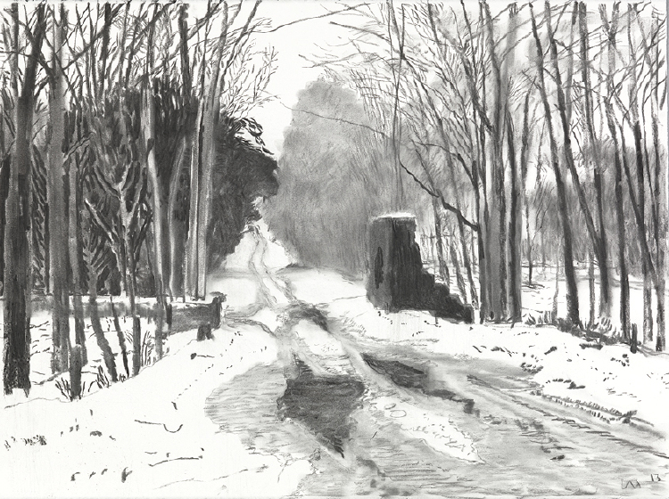 """Image of Woldgate, 22-23 January from """"The Arrival of Spring in 2013 (twenty thirteen)"""""""