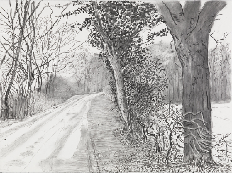 """Image of Woldgate, 6-7 February from """"The Arrival of Spring in 2013 (twenty thirteen)"""""""