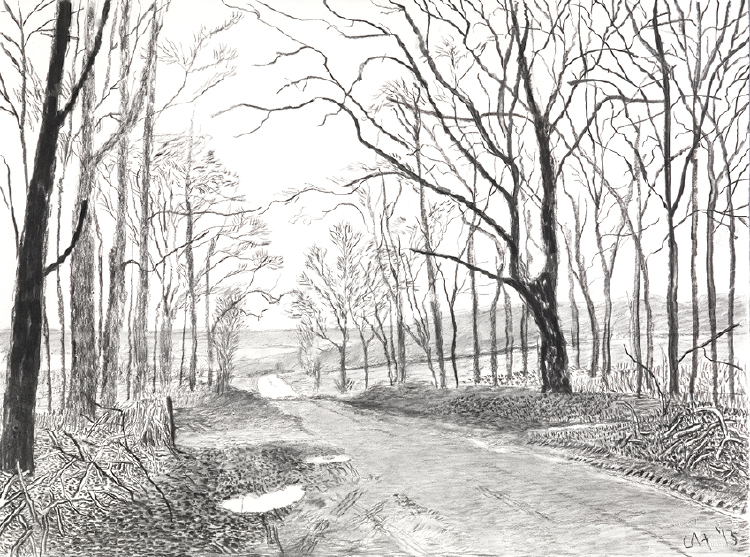 """Image of Woldgate, 16 and 26 March from """"The Arrival of Spring in 2013 (twenty thirteen)"""""""