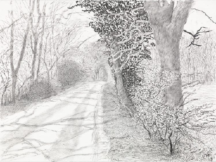 """Image of Woldgate, 30 April, 1 and 5 May from """"The Arrival of Spring in 2013 (twenty thirteen)"""""""