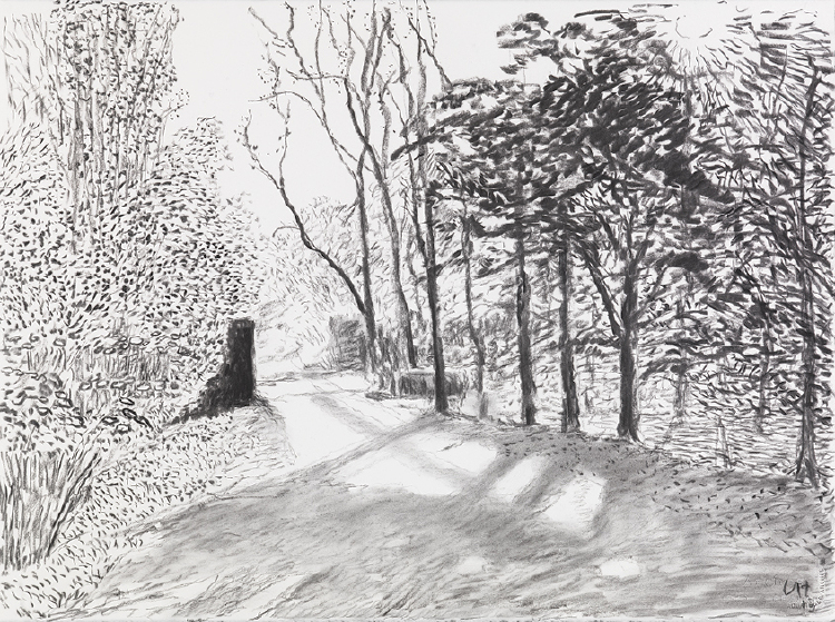 """Image of Woldgate, 6 May from """"The Arrival of Spring in 2013 (twenty thirteen)"""""""