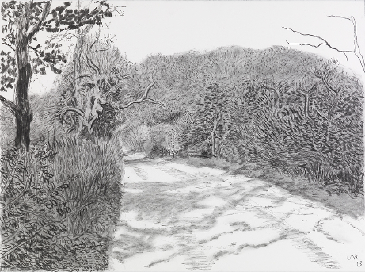 """Image of Woldgate, 6-7 May from """"The Arrival of Spring in 2013 (twenty thirteen)"""""""