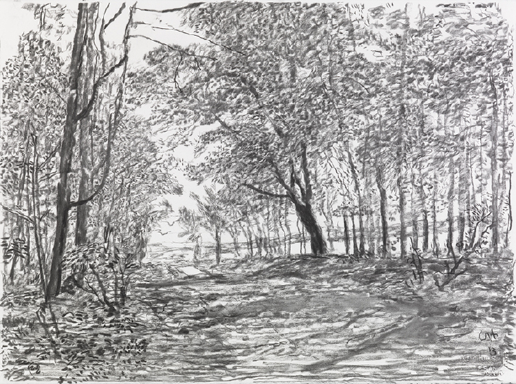 """Image of Woldgate, 9 and 12 May from """"The Arrival of Spring in 2013 (twenty thirteen)"""""""