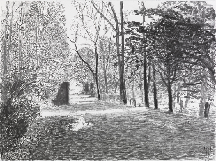 """Image of Woldgate, 12-13 May from """"The Arrival of Spring in 2013 (twenty thirteen)"""""""