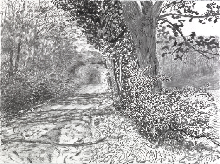"""Image of Woldgate, 15-16 May from """"The Arrival of Spring in 2013 (twenty thirteen)"""""""