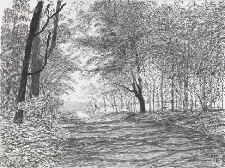 """Image of Woldgate, 17 May from """"The Arrival of Spring in 2013 (twenty thirteen)"""""""