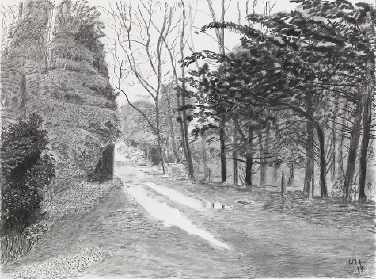 """Image of Woldgate, 20-21 May from """"The Arrival of Spring in 2013 (twenty thirteen)"""""""