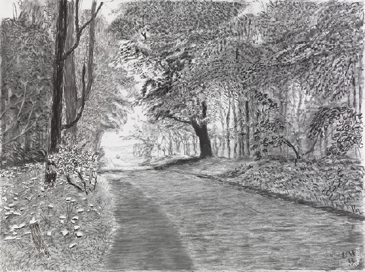 """Image of Woldgate, 21-22 May from """"The Arrival of Spring in 2013 (twenty thirteen)"""""""