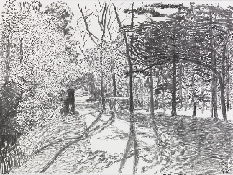 """Image of Woldgate, 27 May from """"The Arrival of Spring in 2013 (twenty thirteen)"""""""