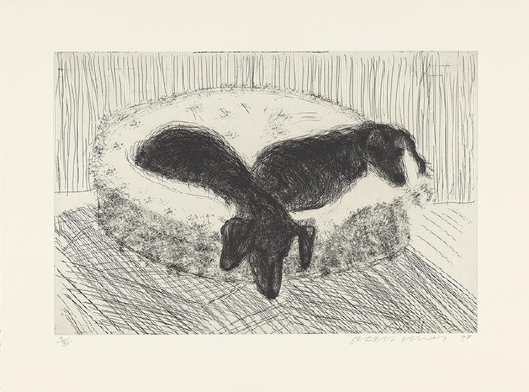 Image of Dog Etching No. 12