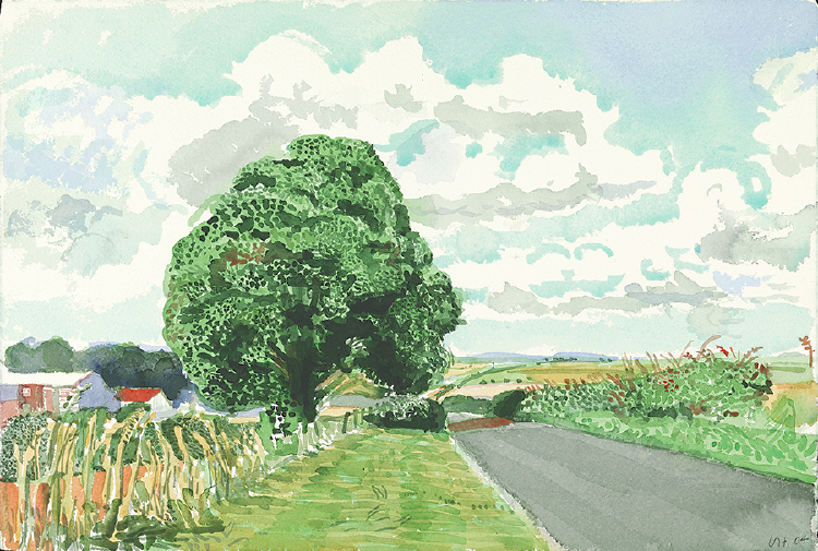 "Image of Road and Tree, near Wetwang from ""Midsummer: East Yorkshire"""