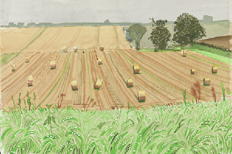 "Image of Field of Bales, East Yorkshire, Gray Day from ""Midsummer: East Yorkshire"""