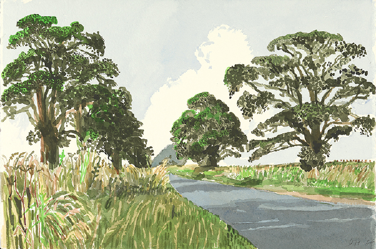 "Image of Trees near Rudston from ""Midsummer: East Yorkshire"""