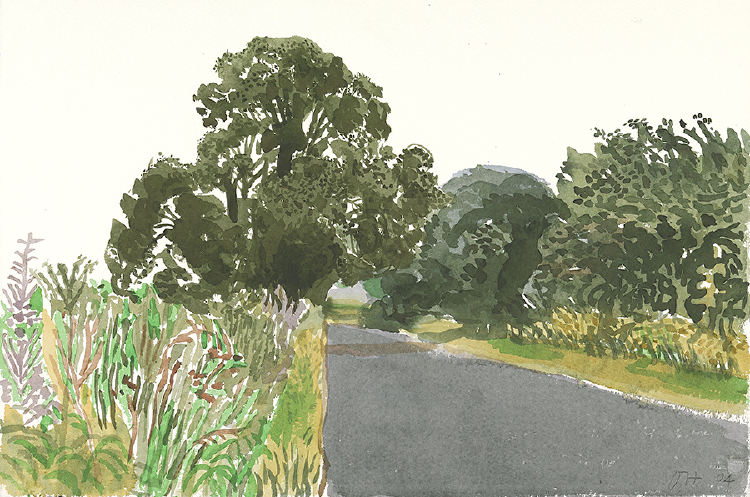 "Image of Roadside Trees. East Yorkshire. from ""Midsummer: East Yorkshire"""